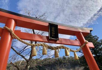 【画像】櫻ガチヲタの行動力wwwwwwwww金櫻神社行く強者w