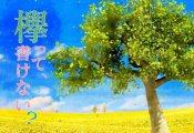 【欅坂46】4/29放送『欅って、書けない?』「企画プレゼン大会 後半」今泉の企画が気になるなww