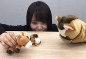 【悲報】菅井友香、度重なるストレスでおかしくなっていた伏線がこちら…