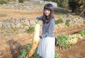 【欅坂46】うちの畑を欅坂のたぬきに荒らされて困ってるんだがwwwwww