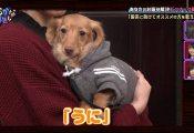 お悩み解決!スナック眞緒の東村芽依回番組史上ワーストクラスで酷かった 件。