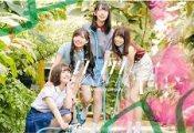日向坂46「ドレミソラシド」6日目の売上を見たヲタの感想がコチラ!