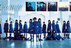 【欅坂46】本日発表の欅坂46からの重大発表って結局なんだと思う?